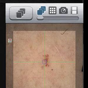 細胞構造画像ソフト