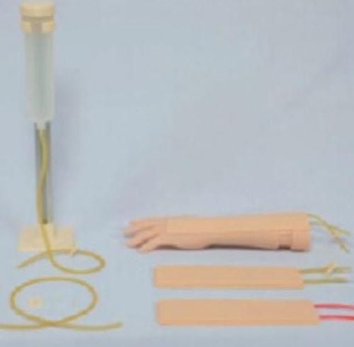 注入用解剖模型 / 腕 / 実習用 / 子供