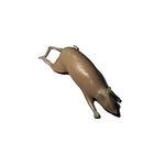 レントゲン写真用動物試験用ファントム