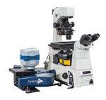 生物学顕微鏡 / 光学 / 蛍光 / 共焦点