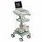 携帯型超音波装置 / 多目的超音波画像診断用 / 内蔵型コンソール