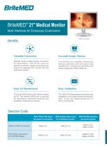 BriteMED Endoscopy Display MMS-21CA