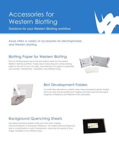 Azure Blotting Accessories