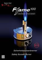 Flame 100
