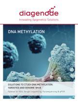 DNA Methylation Solutions