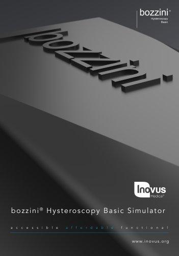 bozzini Basic Simulator