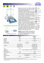ANALYTICAL BALANCES AS 3Y - 1