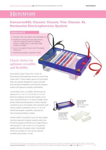 Horizontal Electrophoresis System