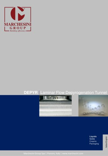 DEPYR Laminar Flow Depyrogenation Tunnel
