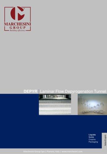 DEPYR Laminar Flow Depyrogenation Tunnel