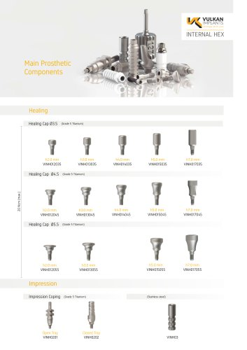 Main Prosthetic Components