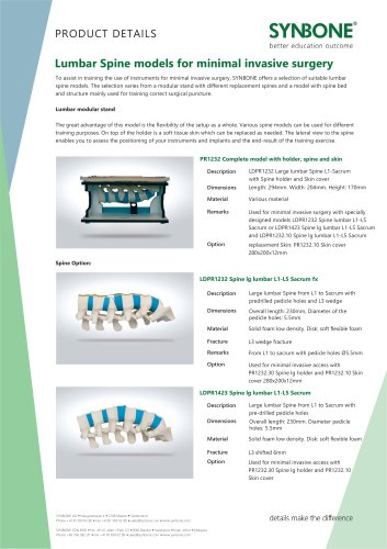 Lumbar Spine Models for