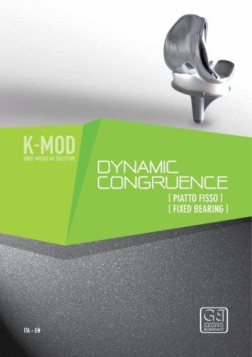K-MOD DYNAMIC CONGRUENCE