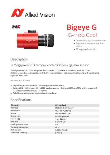 Bigeye G-1100 Cool