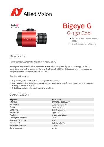 Bigeye G-132 Cool
