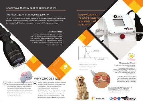 DSW vet Diamagnetic shockwave