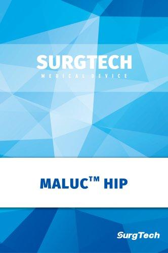 Surgtech/Hip Prosthesis System