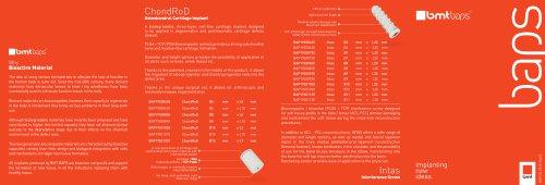 BMT BAPS Brochure