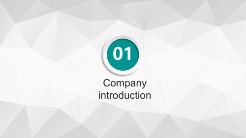Company brief introduction