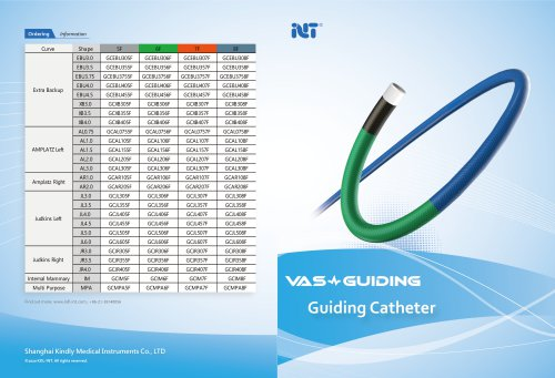 GC Guiding Catheters
