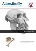 Anthropology Models