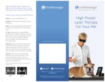 High Power Laser Therapy For Your Pet - 1