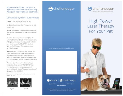 High Power Laser Therapy For Your Pet