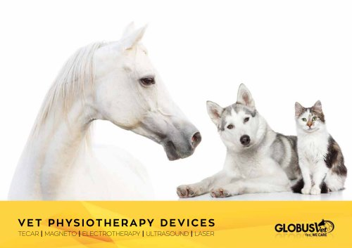 VET PHYSIOTHERAPY DEVICES