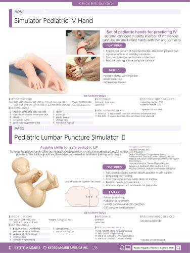 M43D Pediatric Lumbar Puncture Simulator II