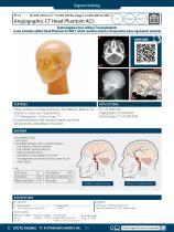 PH-3 Angiographic CT Head Phantom ACS - 1