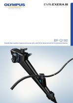 BF-Q190 - 1