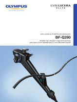 BF-Q290 - 1
