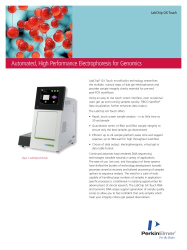 Automated, High Performance Electrophoresis for Genomics