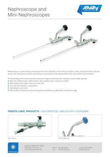 Nephroscope and Mini-Nephroscopes