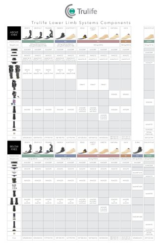 AAA adapter and lower limb components chart