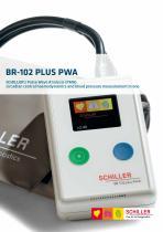 BR-102 plus PWA