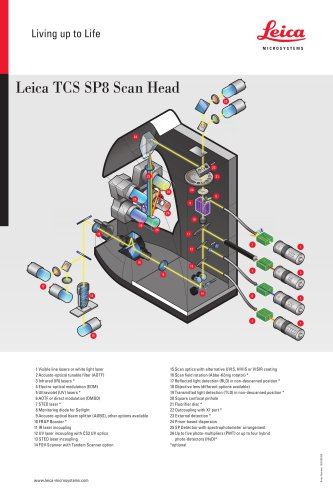 Leica TCS SP8 Scan Head-Flyer_EN