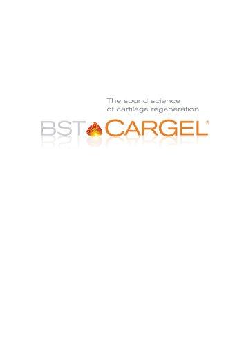 BST-CarGel ®