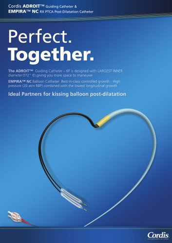 Perfect Together- Kissing Technique brochure