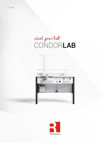 Condor Lab