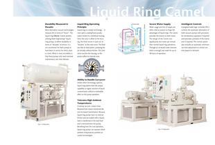 Liquid Ring 'Camel' Vacuum Systems - 2