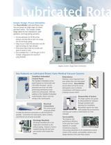 Lubricated Rotary Vane Vacuum Systems - 3