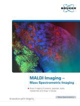 MALDI Imaging - 1