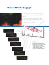 MALDI Imaging - 2