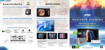 ACCEL AI Brochure