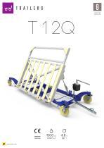 T 12Q - 2