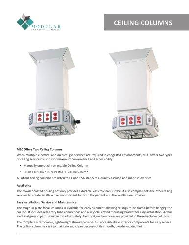 Ceiling Columns
