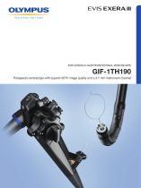 GIF-1TH190 - 1