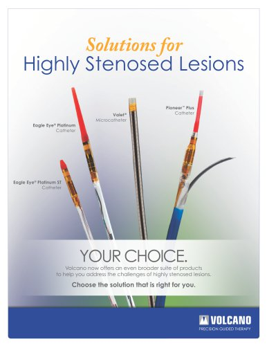 Highly Stenosed Lesions Brochure