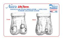 Nasco?s Life/form® Testicular Exam Simulator